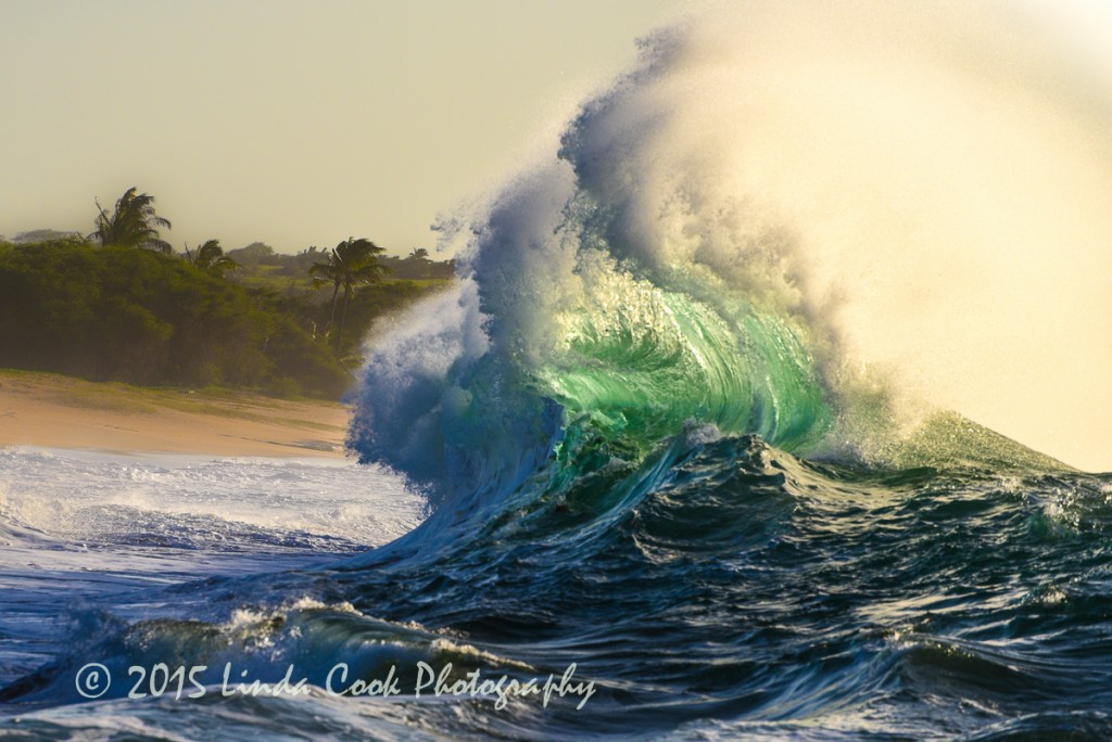 Papohaku wave-2761