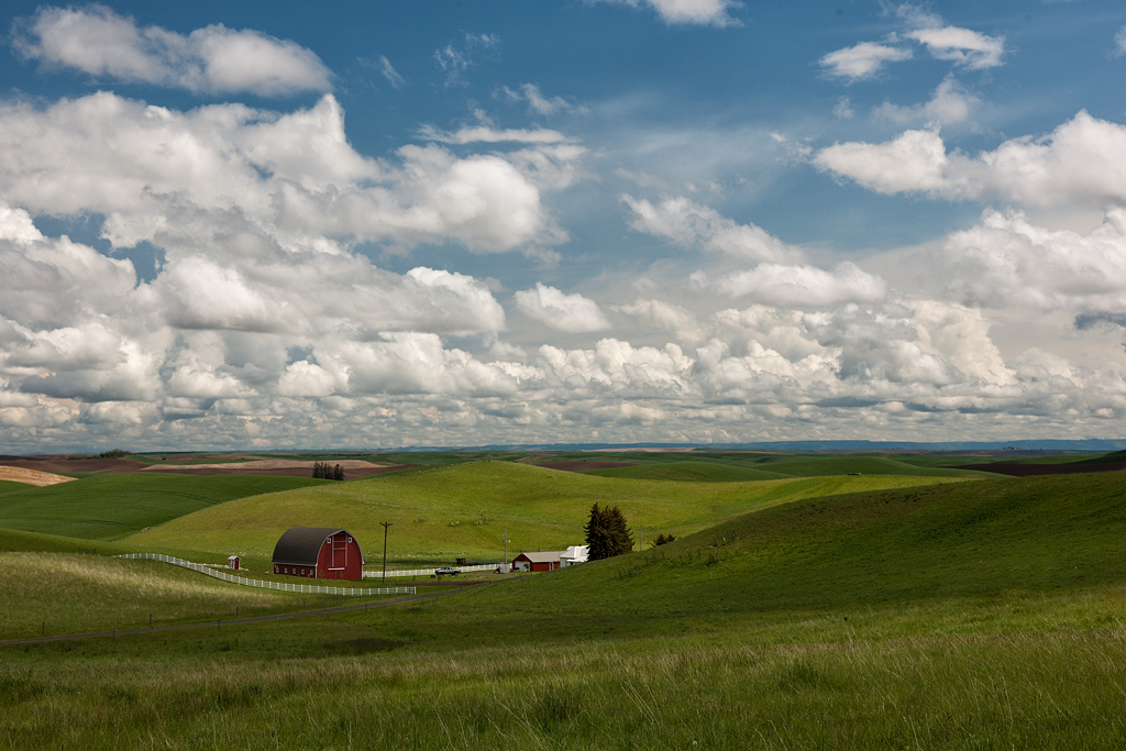 In the Palouse!