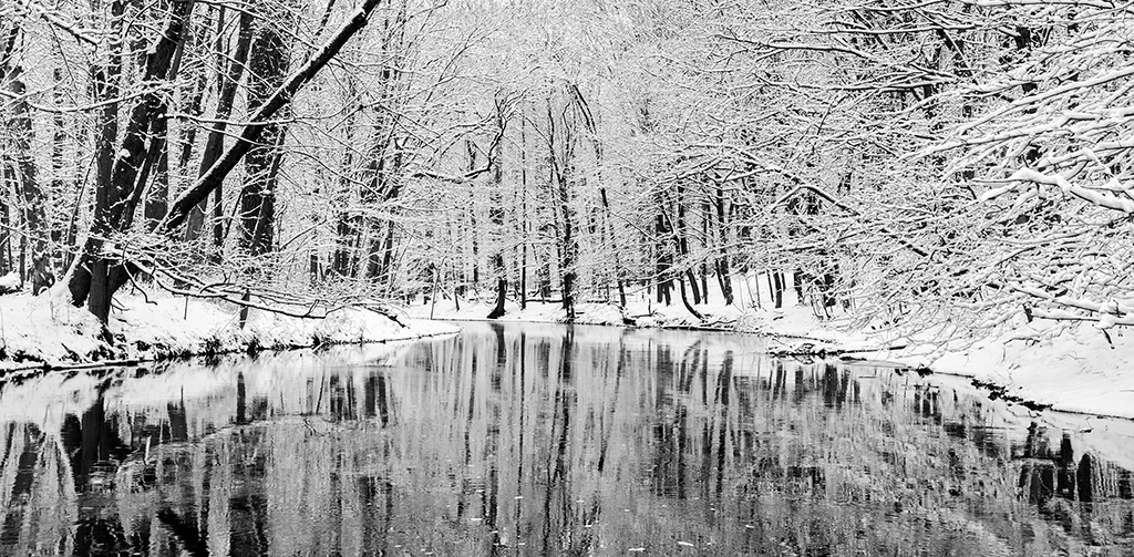 Snow in B&W