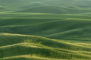Palouse_2013Jun06_0646