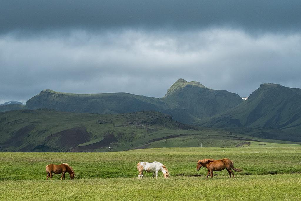 Iceland_20130706_0210