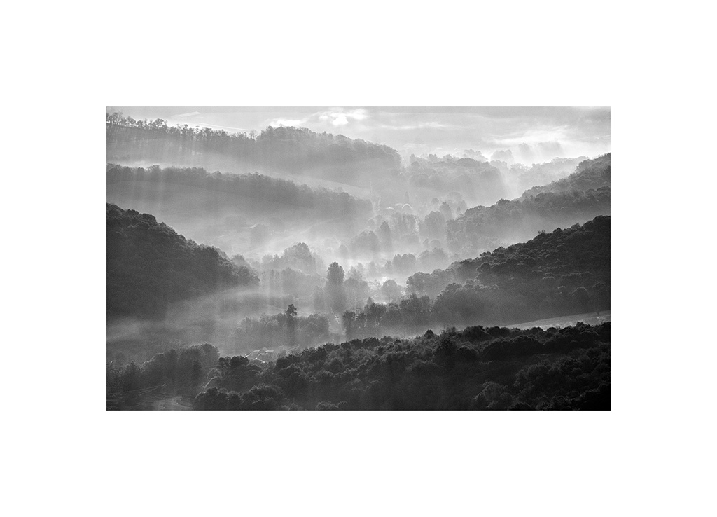 Fog in the Valley II