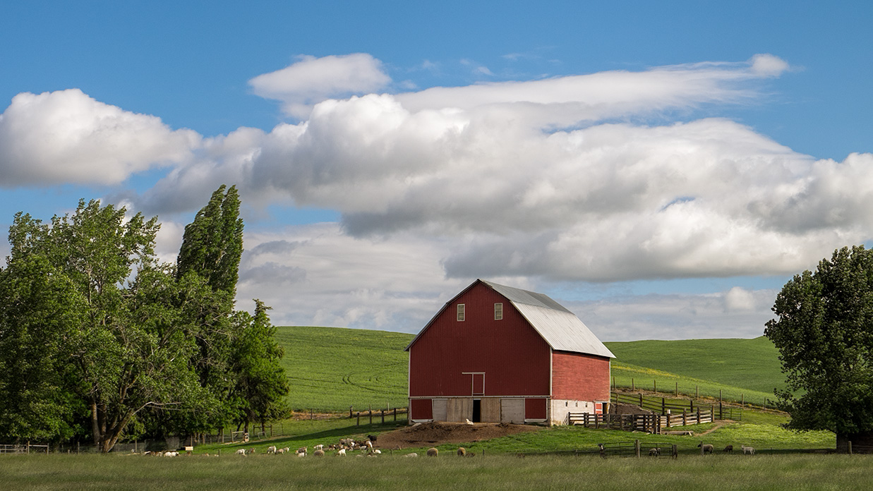 New Zealand Tour – Red Barn in the Palouse