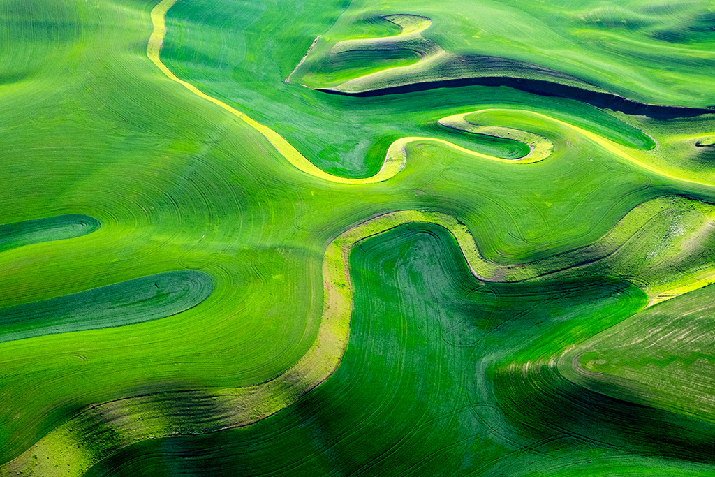 The Palouse from 4,000 feet