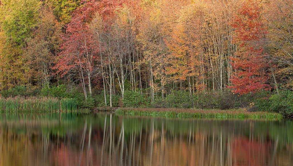 Fall_20121012_0380