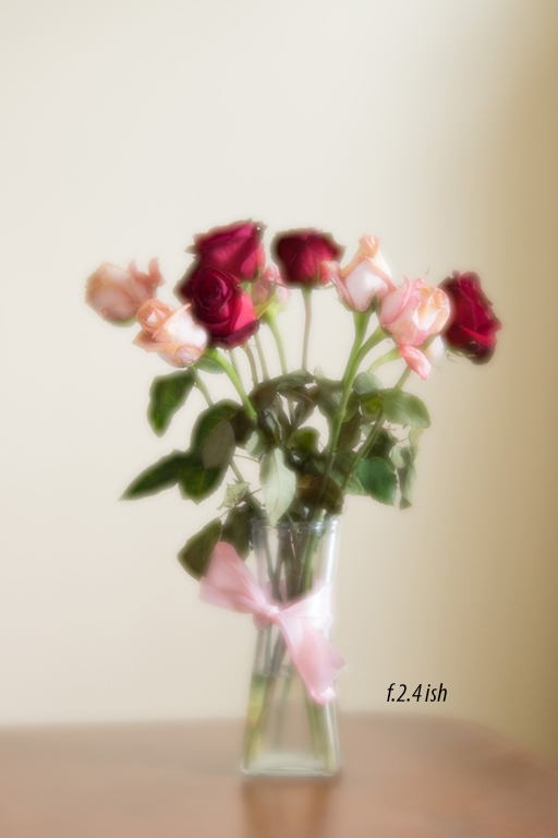 Lensbaby Velvet 56 – Initial thoughts.