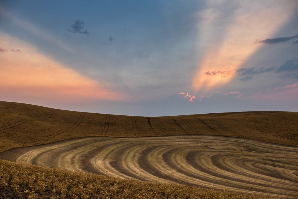 2015 Palouse Images captured by Joe R. Bumgardner, M.D.