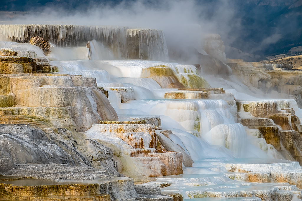 Canary Spring – Yellowstone