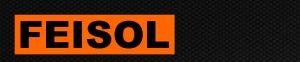feisol_logo