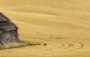 2011Aug07_Palouse_0010.jpg