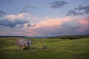 2011May20_Tuscany_1534.jpg