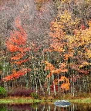 Oct182010_PEEC_0256.jpg