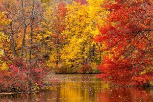 Oct222010_PEEC_0149.jpg