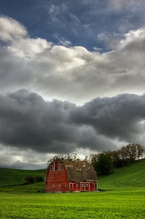 Palouse_080606_0056_7_8_tonemapped.jpg